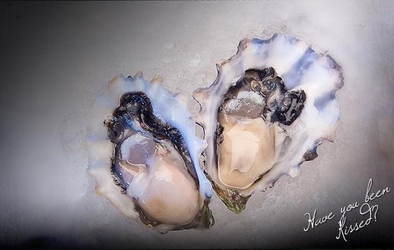image of a Pacific Kiss BC Oyster